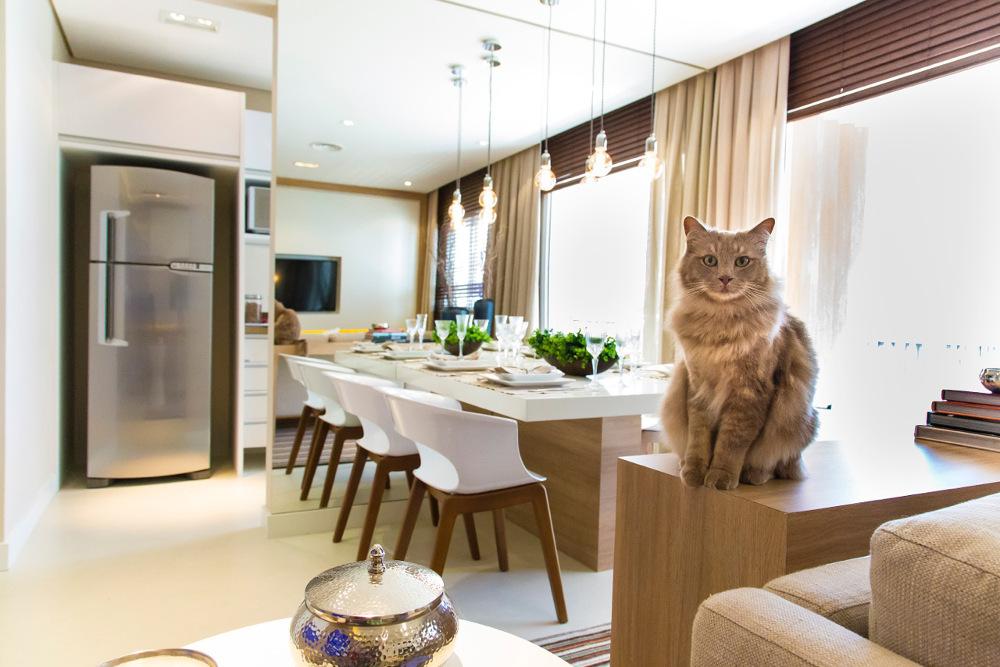 Foto apartamento decorado - 50 m²